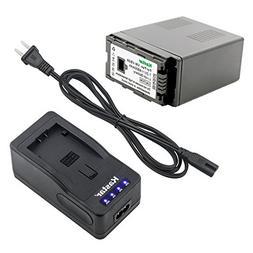 Kastar LED Super Fast Charger & Camcorder Battery X1 for Pan